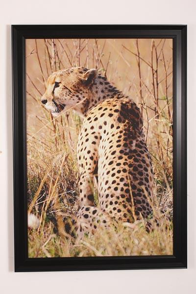 canvas print framed